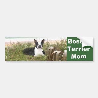 Boston Terrier Mom Bumper Sticker Beachgrass
