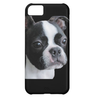 Boston Terrier: More than my share of cuteness iPhone 5C Case
