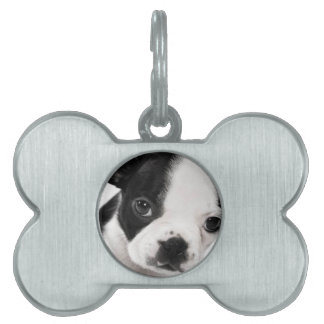 Boston Terrier Pet Name Tags