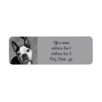 Boston Terrier photo Return Address Label