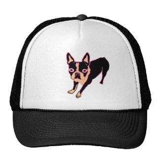 Boston Terrier (pink/blk) Cap