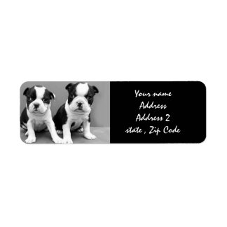 Boston Terrier Puppies Address Labels