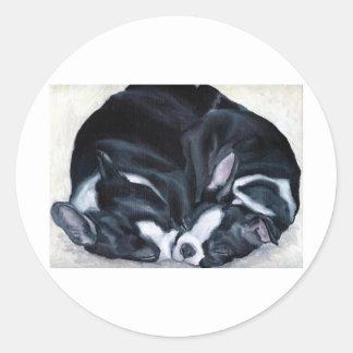 Boston Terrier Puppies Classic Round Sticker