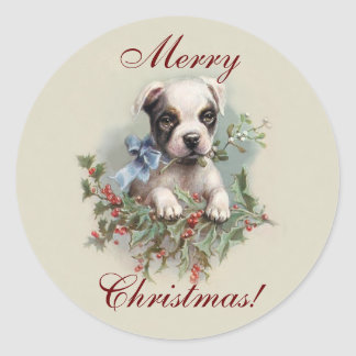 Boston Terrier Puppy - Cute Dog Christmas Holiday Round Sticker