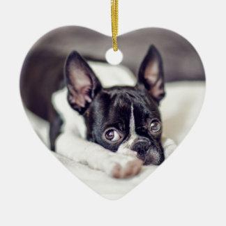 Boston Terrier Puppy Ceramic Heart Decoration