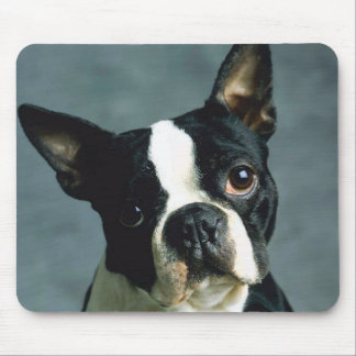 Boston Terrier Puppy Dog Mouse Pad