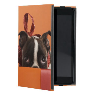 Boston terrier puppy in gift box cases for iPad mini