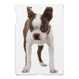 Boston Terrier Puppy iPad Mini Cover