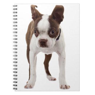 Boston Terrier Puppy Note Book