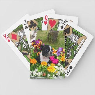 Boston Terrier puppy Poker Deck