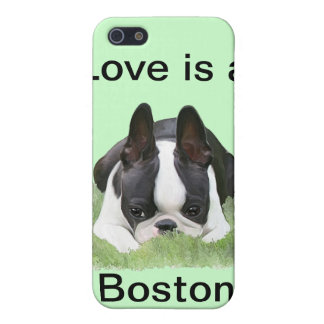 Boston terrier puppy resting iPhone 5/5S case