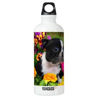 Boston Terrier puppy SIGG Traveller 0.6L Water Bottle