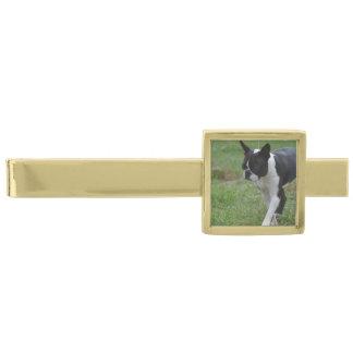 Boston Terrier Puppy Tie Bar