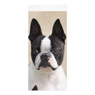 Boston  Terrier Rack Card