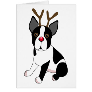 Boston Terrier Reindeer Card