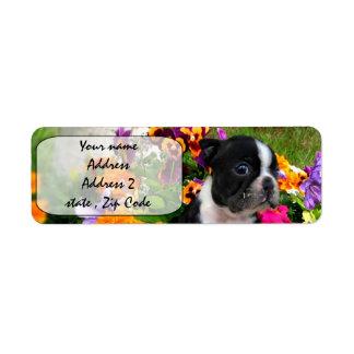 Boston Terrier Return Address Label