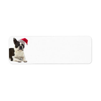 Boston Terrier Return Address Labels