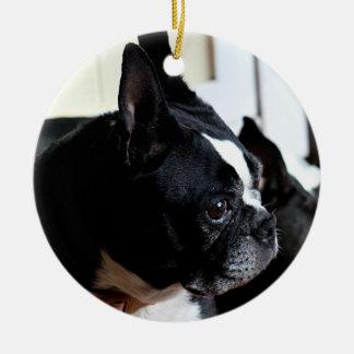 Boston terrier round ceramic decoration