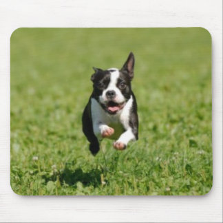 Boston Terrier Running Mousepad
