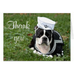 Boston terrier sailor dog greeting card