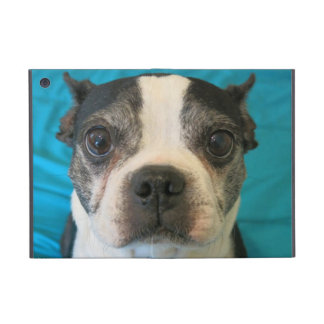 Boston Terrier sitting on bed Covers For iPad Mini