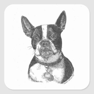 Boston Terrier Square Sticker