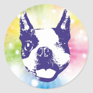 Boston Terrier Sunburst Classic Round Sticker