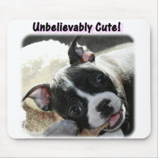 Boston Terrier:  Unbelievably Cute! Mouse Pad