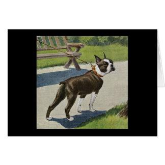 Boston Terrier Vintage Greeting Card