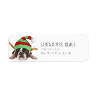 Boston Terrier With A Christmas Hat Return Address Label