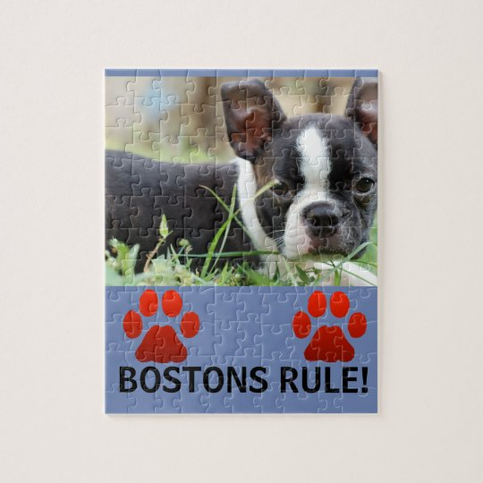 Bostons rule puzzle