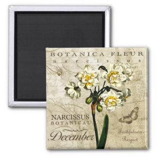 Botanica December Square Magnet