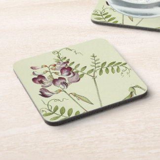Botanical Alpine Flowers Floral Coaster