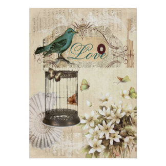 botanical art birdcage modern vintage french bird poster