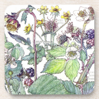 Botanical Blackberry Fruit Berry Flowers Coaster
