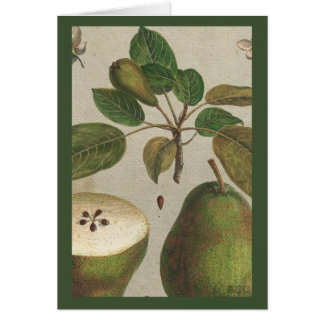 Botanical Fruit Pear Still Life Card