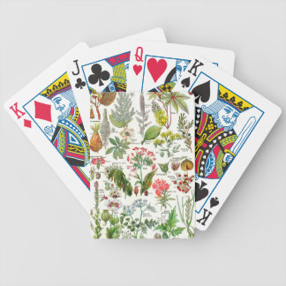 Botanical Garden Bicycle Playing Cards