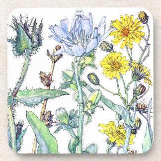 Botanical Gasteria Wildflower Flowers Coaster