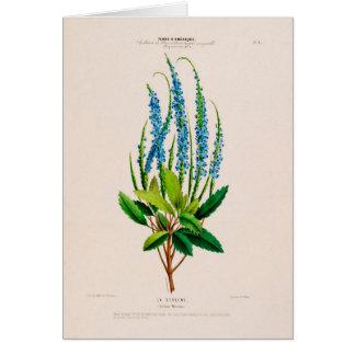 Botanical Greeting Card