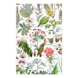 Botanical Illustrations Stationery