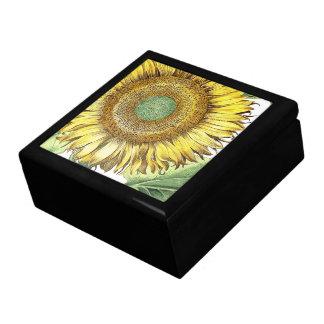 Botanical Morning Glory Flowers Floral Gift Box