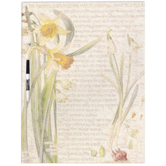 Botanical Narcissus Flowers Dry Erase Board