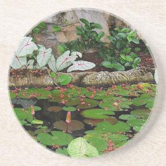 Botanical Nature Lily Pond Landscape Coasters