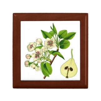 Botanical Pear Jewelry Box (You can customize)