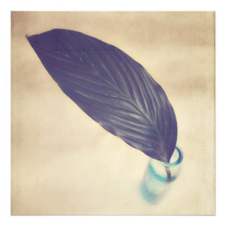 Botanical Photo Print