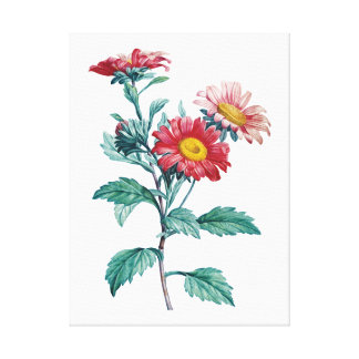 Botanical PREMIUM QUALITY print of gerberas Stretched Canvas Print