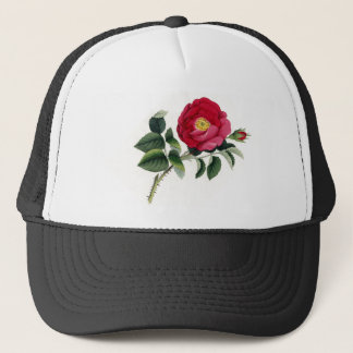 Botanical Print - French Rose (Rosa Gallica) Trucker Hat