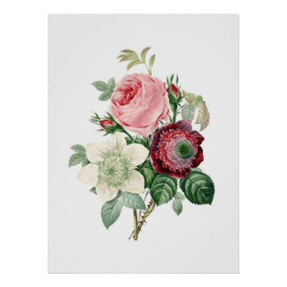 Botanical print of ROSES original by Redoute