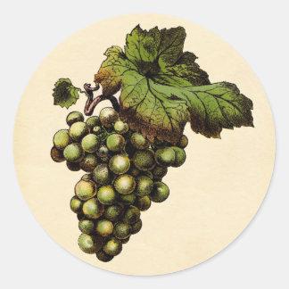 Botanical Print - White Grape Round Sticker