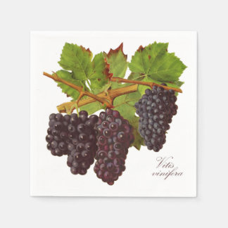 Botanical Purple Grapes Paper Napkins (Set of 50)